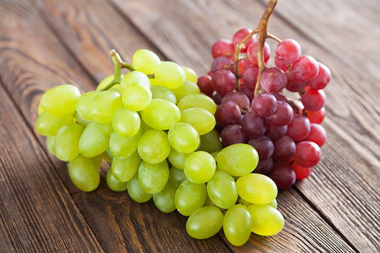 Resultado de imagem para uvas